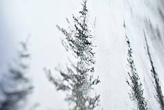 Kresby - Nad lesom  - 12819231_