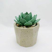 Nádoby - Kvetináč s betónovým kaktusom Polygon 2 - 12819832_