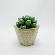 Nádoby - Kvetináč s betónovým kaktusom Polygon - 12819842_