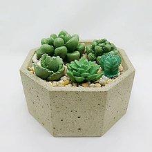 Nádoby - Kvetináč s betónovými kaktusmi Osemuholník veľký - 12819854_