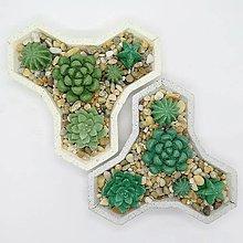 Nádoby - Kvetináč s betónovými kaktusmi Trojlístok - 12819869_