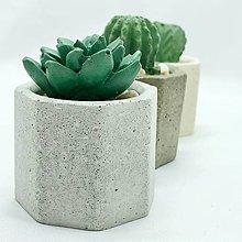 Nádoby - Sada kvetináčov s betónovými kaktusmi Osemuholník malý - 12819996_
