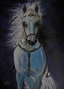 Obrazy - Kráľ koní - 12840960_