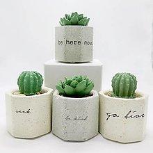Nádoby - Kvetináč s betónovým kaktusom Osemuholník malý Tatoo - 12849297_