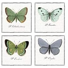 Papier - Servitka V 67 - 12859269_