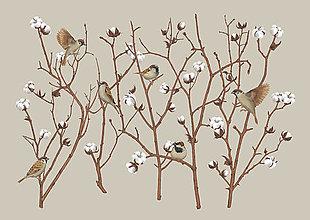 Obrazy - SPARROW ON COTTON PLANT - 12865846_