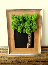 Obrázky - strom I - 12881433_