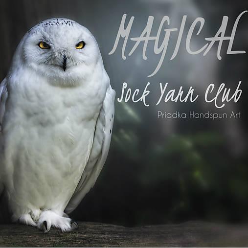 Magický ponožkový VLNA CLUB - Január/Február 2021