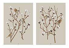 Grafika - SPARROW ON COTTON PLANT 2 - 12886599_