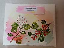 Kresby - Akvarel Hloh obyčajný - 12908539_