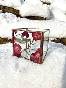 Svietidlá a sviečky - Svietnik so sušenými ružami  - 12928369_