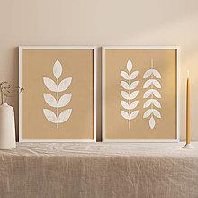 Obrazy - Botanický set printov - 12931266_