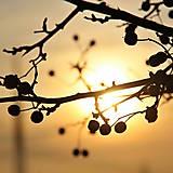 Fotografie - západ slnka - 12934196_