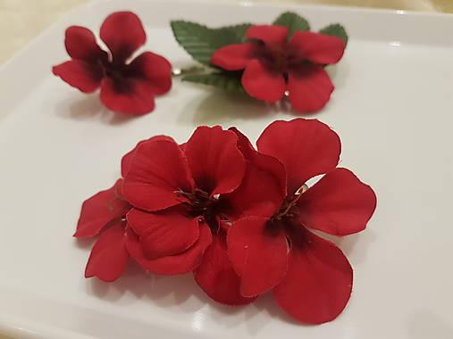 Red love 2 - pinetka