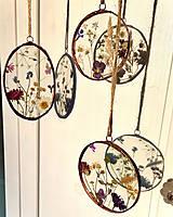 Dekorácie - Závesné dekorácie s lúčnymi kvetmi  (12 cm ovál) - 12958610_