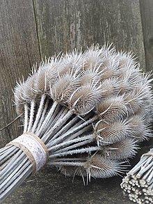Dekorácie - Kytica z bodliakov s dlhými stopkami - 12974972_