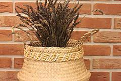 Dekorácie - Košík z morskej trávy s macramé opaskom - 12977728_
