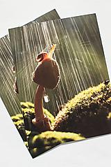 """Papiernictvo - Pohľadnica """"na hríbiku v daždi"""" - 12976752_"""