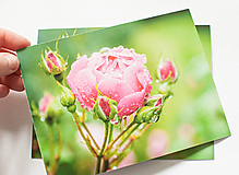 """Papiernictvo - Pohľadnica """"Rosa"""" - 12976852_"""