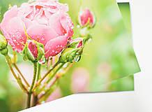 """Papiernictvo - Pohľadnica """"Rosa"""" - 12976854_"""