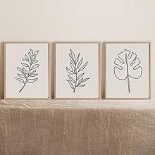 Obrazy - Set 3 botanických obrazov - 12988081_