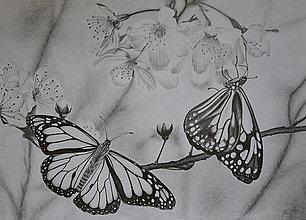 Kresby - Motýle na čerešňových kvetoch - 12991957_