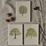 - pohľadnice - listnatý set 3ks - 13001417_