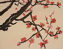 Obrazy - Obraz SAKURA Japonská čerešňa akryl na plátne 50 X 50 cm - 13011902_