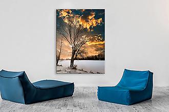 Obrazy - STROM  fotoplátno 40x60 cm - 13028327_