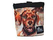 Pre zvieratá - Pamlskovník Dinofashion Labrador - 13045476_