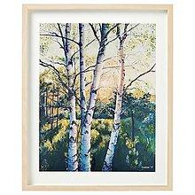 """Obrazy - Obraz """"Vo svetle brezy"""" - 13057430_"""
