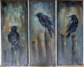 Obrazy - Havrania pieseň...(triptych) - 13064947_