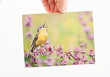 """Papiernictvo - Pohľadnica """"jar je počuť"""" - 13066685_"""