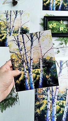 "Obrazy - Fotoreprodukcia / artprint  obrazu ""Vo svetle brezy"" - 13075259_"