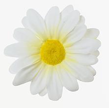 Iný materiál - umelý kvet-hlavička margaréta 7cm/10ks - 13096718_