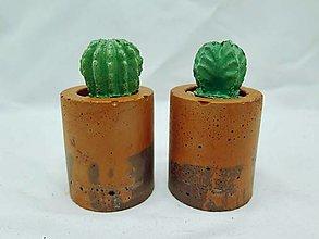 Dekorácie - Sada kvetináčov s betónovými kaktusmi Valec Zero Waste - 13110858_
