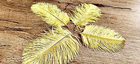 Galantéria - Pierko ozdobné Marabou - 15-20 cm (Žltá) - 13140026_
