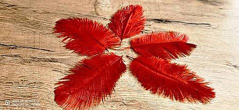 Galantéria - Pierko ozdobné Marabou - 15-20 cm (Červená) - 13140027_