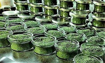 Potraviny - MEDVEDÍ CESNAK sušený - 13137941_