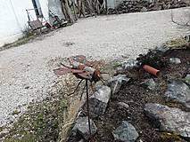 Dekorácie - Koník lúčny železný - 13142673_