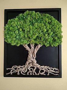 Obrázky - Machový obraz - strom veľký - 13166194_