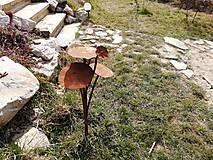 Dekorácie - Koník lúčny železný - 13183614_