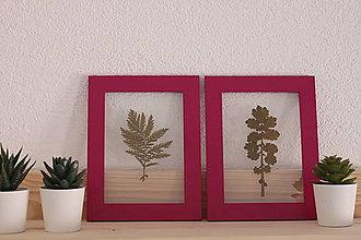 Detské doplnky - Sada dvoch obrázkov lisovaných divých rastlín - 13186449_