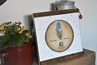 Obrázky - Vidiecky obrázok s hyacintom - 13194623_
