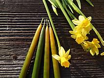 Dobrý obchod - Jarné máčané sviečky NARCIS (4ks) - 13202459_