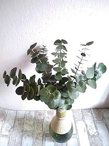 Polotovary - živý eukalyptus 40 cm - 13217936_