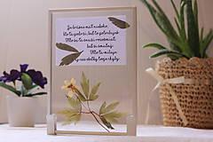 Obrázky - Darček s citátom a veternicou - 13220739_