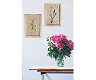 Obrázky - Tri vintage obrazy z herbáru podľa vlastného výberu - 13226018_
