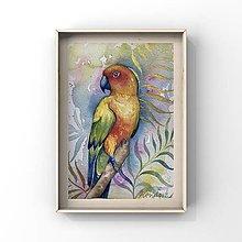Obrazy - Originál maľba-papagáj - 13226282_