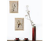 Dekorácie - Botanický herbár liečivých bylín Fialka trojfarebná - 13226687_